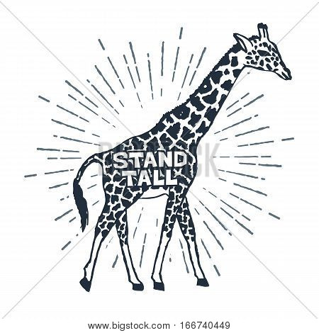 Hand drawn label with textured giraffe vector illustration and