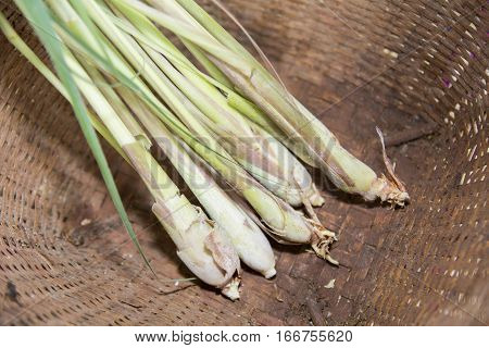 lemon grass in basket - thai spices and herb
