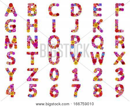 Flower text alphabet isolated on white background
