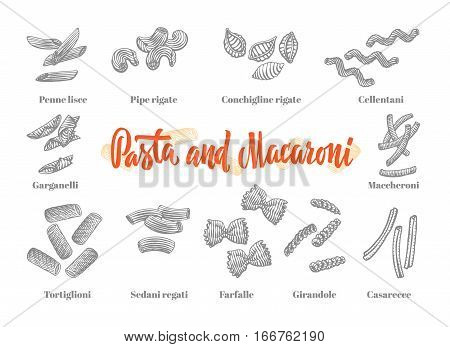 Italian cuisine elements set of different  variations of pasta and macaroni in sketch style isolated vector illustration