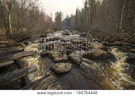 Beautiful View Of The River In Siberia