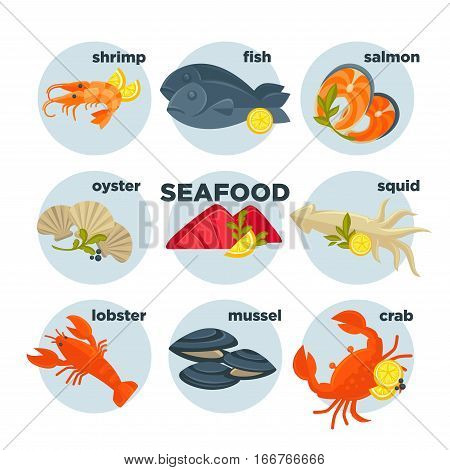 Seafood set crab, lobster, fish and shrimp, squid and salmon, prawn, mussel and oyster. Shellfish, shell and sea food - flat vector illustration for restaurant design. Isolated on white.