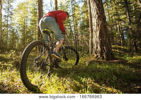 Mountin Biker With Bike In The Forest. Sport, Adventure, Motivation.