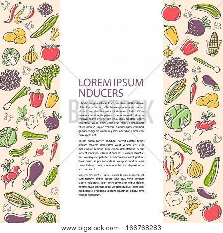 Agricultural flyer template with hand drawn vegetables flat style vector. Various organic product for healthy food. Place for text
