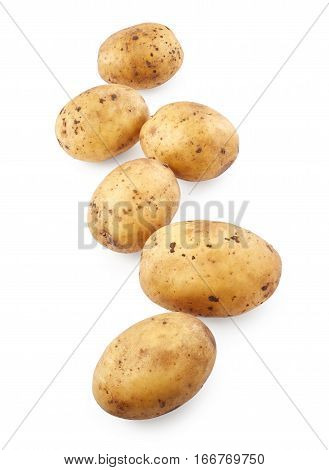 Potatoes isolated on the white background. Vegetable