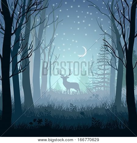 Winter landscape with deer in the forest at night background