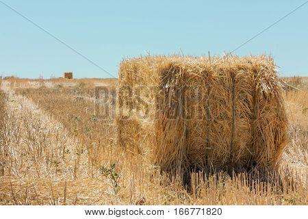 Stacks of hay in summer in Castile-La Mancha, Spain, with copyspace