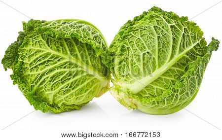 Savoy cabbage isolated on the white background