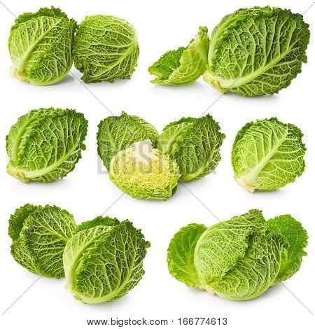 Set of savoy cabbage isolated on white background
