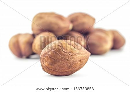 A bunch of hazelnuts on a white background. Raw hazelnuts isolated on white background