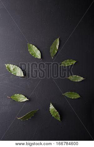 Bay leaves on a black background. Bay leaf. Laurel wreath. Copyspace