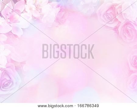 rose flowers soft style with vintage filter effect. Floral design background