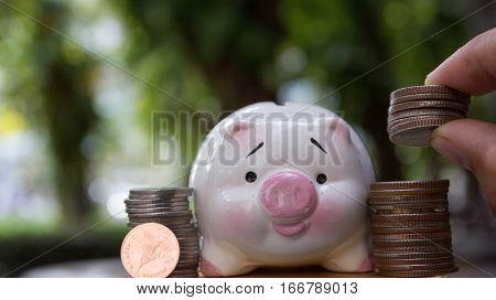 save money, save money piggy concept, piggy save money