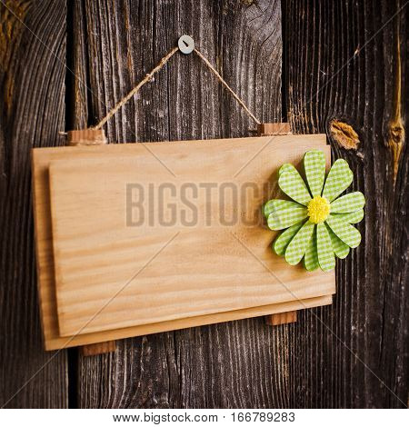 clean plate on a wooden background for text