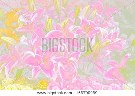 A beautiful pastel flower arrangement. A great background image.