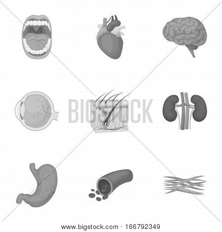 Organs set icons in monochrome style. Big collection of organs vector symbol stock