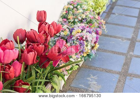 Tulip. Beautiful bouquet of tulips. colorful tulips. tulips in springcolourful tulip