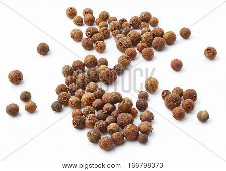 Allspice isolated on white background. Pepper spice