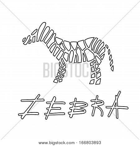Zebra On Background Vector Illustration