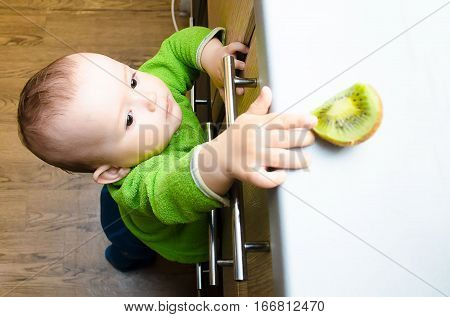 Baby kiwi sees on the table and trying to reach out but can't
