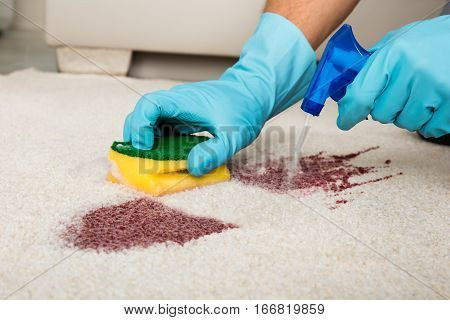 Person Cleaning Stain On Carpet With Spray Bottle
