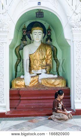 Yangon Myanmar - 9 January 2010: Woman praying on the area of the Shwedagon Pagoda in Yangon on Myanmar