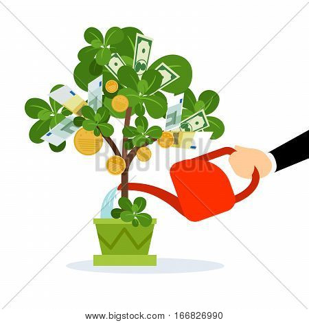 Money tree care vector isolated illustration. Human hand watering money tree
