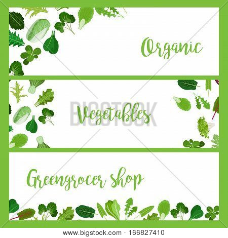 Organic horizontal banners with greengrocers, salad vegetable leaves for cooking design. Vector illustration