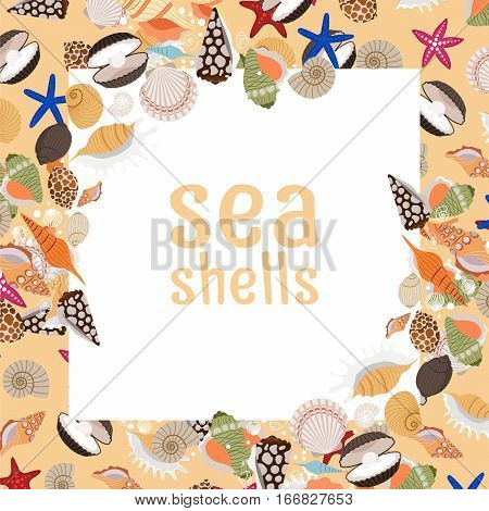 Sea shells background with square frame and text. Vector illustration