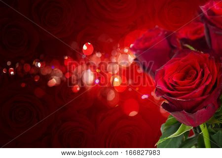 scarlet roses on red bokeh background with sparkles