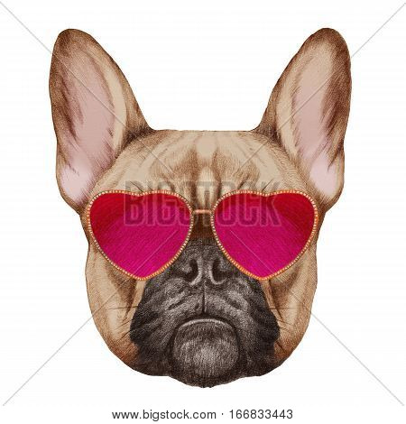French Bulldog in Love! Portrait of French Bulldog with heart shaped sunglasses. Hand-drawn illustration, digitally colored.