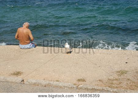 ISTANBUL, TURKEY - AUGUST 14, 2016: Lonely man and the gull at the Burgazada coast