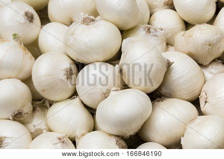 a lot of white onions on a market