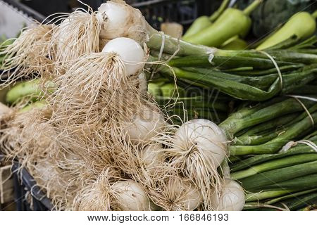 bunches of spring onions on the market