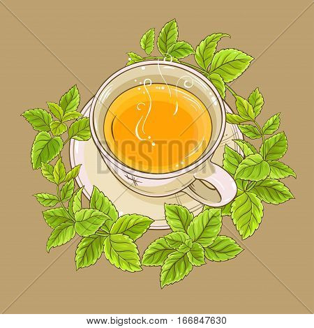 cup of melissa tea on color background
