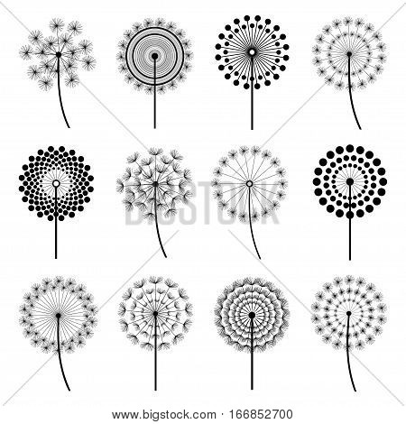 Set of black dandelion fluff isolated on white background. Stylized summer or spring flowers floral design elements icons. Vector illustration