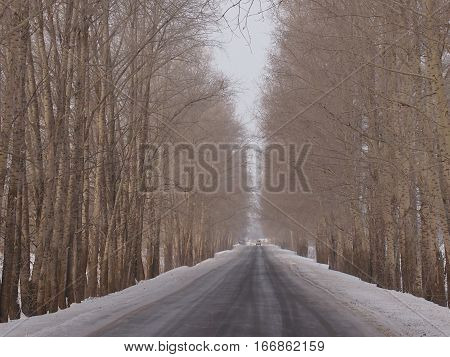 The winter road in a midland of Russia