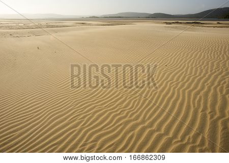 Large Open Stretch Of Beach