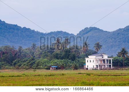 Lonely house with trees, farm and mountain background