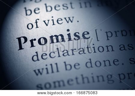 Fake Dictionary Dictionary definition of the word promise.