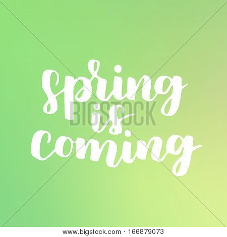 Vector Seasonal Greeting Card Of Hand-written Spring Brush Lettering. Spring Collection White Ink On