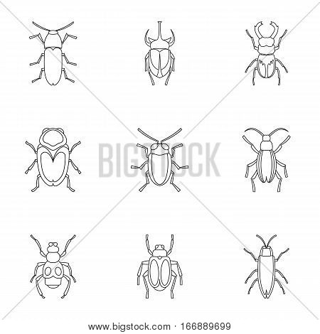 Bugs icons set. Outline illustration of 9 bugs vector icons for web