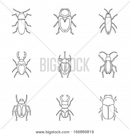 Crawling beetles icons set. Outline illustration of 9 crawling beetles vector icons for web