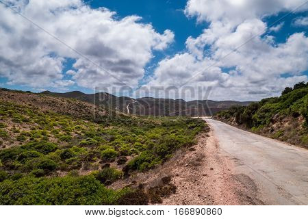 Portugal - Road On Mountain
