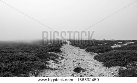 A sand path in Portugal hidden underneath thick fog
