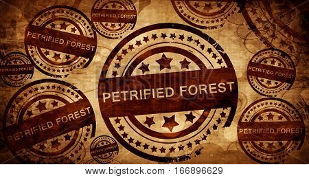 Petrified forest, vintage stamp on paper background