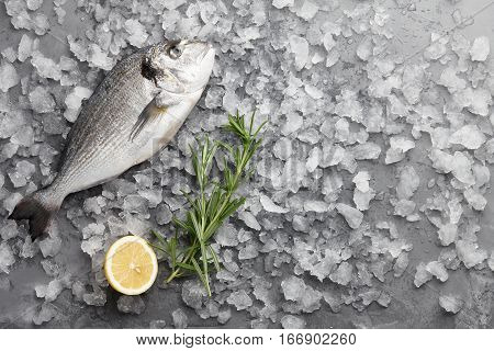 Fresh dorado or gilthead bream cooking with lemon and rosemary on stone background