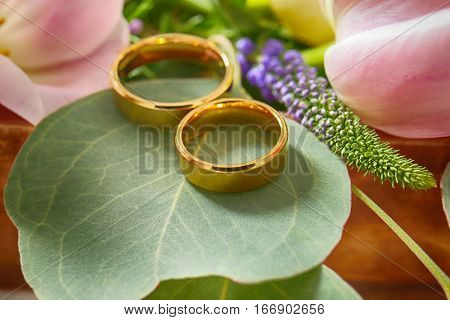 Closeup of wedding rings on green leaf