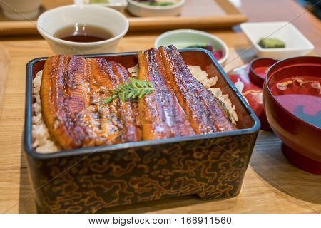 Broiled Eel On Rice,unaju, Japanese Unagi Cuisine