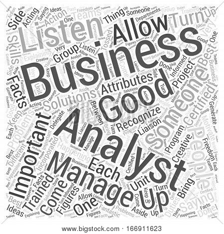 importance of a business analyst Word Cloud Concept